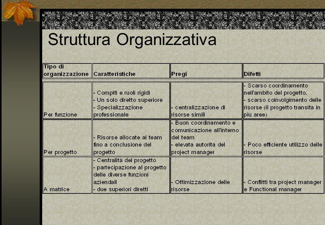 Quale struttura scegliere: Struttura per funzione - progetti semplici che richiedono elevata specializzazione del personale Struttura per progetti - progetti complessi o molto grandi Struttura a matrice - progetti mediamente complessi