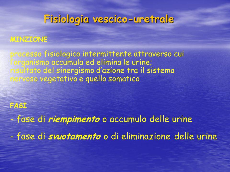 Fisiologia vescico-uretrale Fisiologia vescico-uretrale MINZIONE processo fisiologico intermittente attraverso cui l'organismo accumula ed elimina le