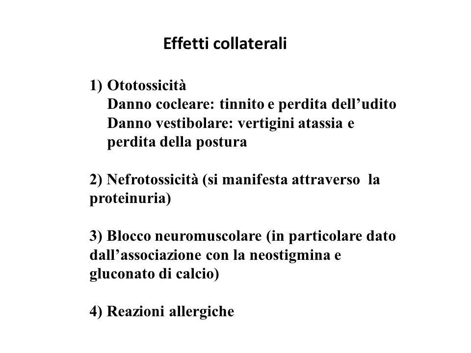 1)Ototossicità Danno cocleare: tinnito e perdita dell'udito Danno vestibolare: vertigini atassia e perdita della postura 2) Nefrotossicità (si manifes