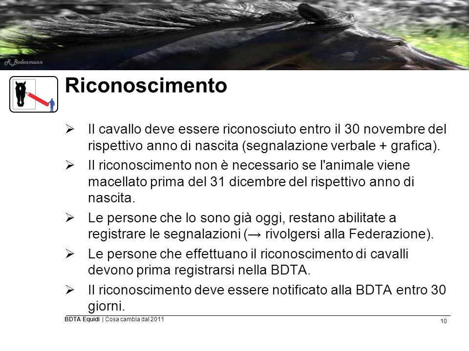 10 BDTA Equidi | Cosa cambia dal 2011 Riconoscimento  Il cavallo deve essere riconosciuto entro il 30 novembre del rispettivo anno di nascita (segnal