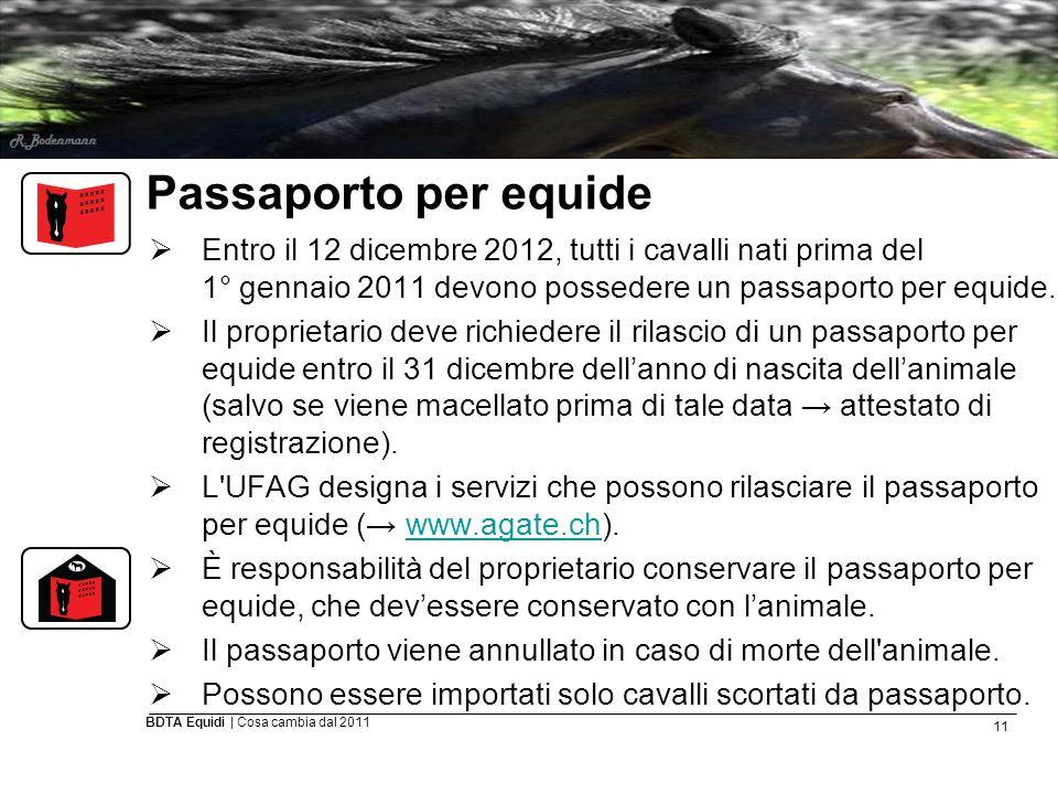 11 BDTA Equidi | Cosa cambia dal 2011 Passaporto per equide  Entro il 12 dicembre 2012, tutti i cavalli nati prima del 1° gennaio 2011 devono possede