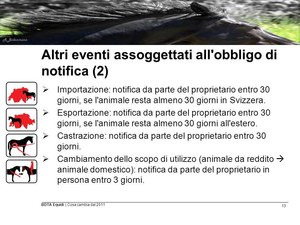 13 BDTA Equidi | Cosa cambia dal 2011 Altri eventi assoggettati all'obbligo di notifica (2)  Importazione: notifica da parte del proprietario entro 3