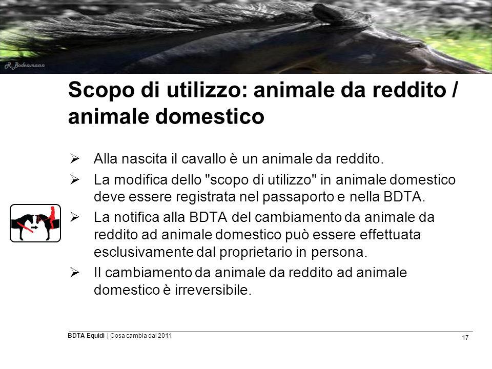 17 BDTA Equidi | Cosa cambia dal 2011 Scopo di utilizzo: animale da reddito / animale domestico  Alla nascita il cavallo è un animale da reddito.  L