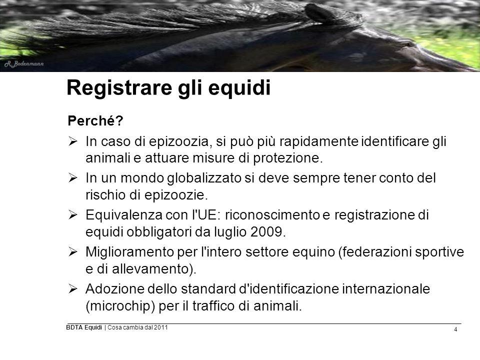 4 BDTA Equidi | Cosa cambia dal 2011 Registrare gli equidi Perché?  In caso di epizoozia, si può più rapidamente identificare gli animali e attuare m