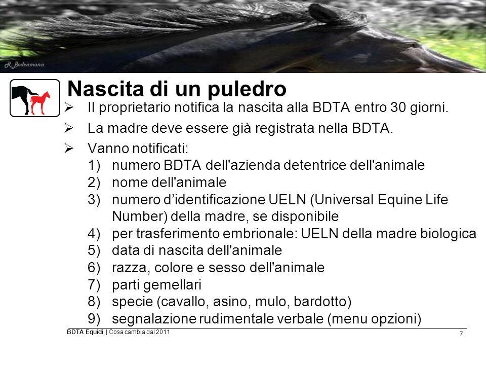 7 BDTA Equidi | Cosa cambia dal 2011 Nascita di un puledro  Il proprietario notifica la nascita alla BDTA entro 30 giorni.  La madre deve essere già