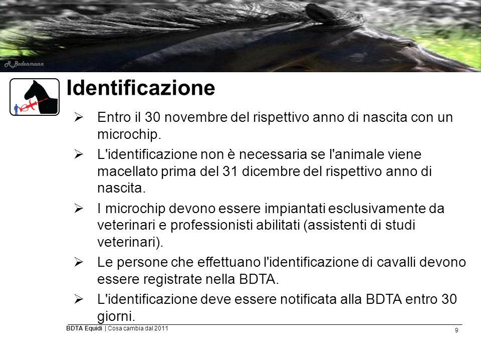 9 BDTA Equidi | Cosa cambia dal 2011 Identificazione  Entro il 30 novembre del rispettivo anno di nascita con un microchip.  L'identificazione non è