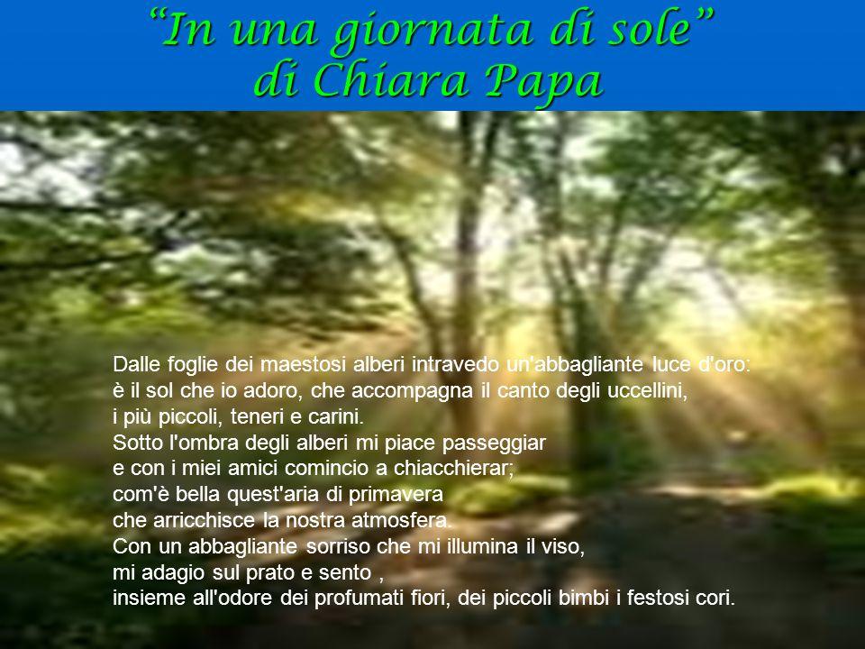 """""""In una giornata di sole"""" di Chiara Papa Dalle foglie dei maestosi alberi intravedo un'abbagliante luce d'oro: è il sol che io adoro, che accompagna i"""