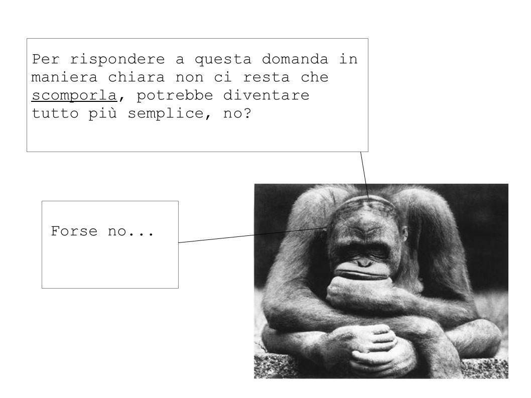 Quale è più bella ? Non parlo mica delle scimmie, eh...
