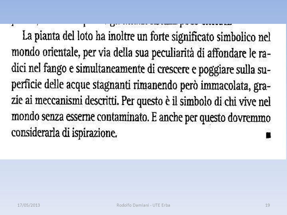 17/05/2013Rodolfo Damiani - UTE Erba19