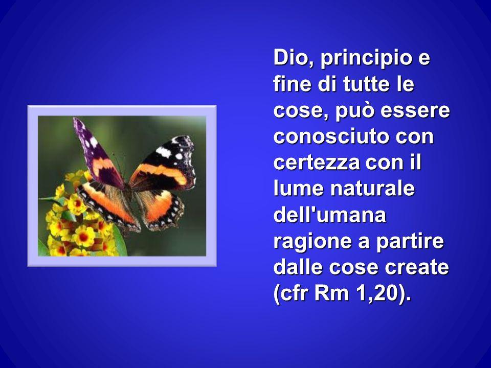Dio, principio e fine di tutte le cose, può essere conosciuto con certezza con il lume naturale dell'umana ragione a partire dalle cose create (cfr Rm