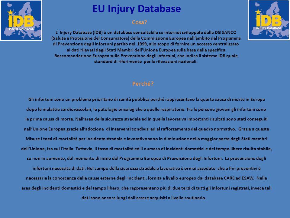 L' Injury Database (IDB) è un database consultabile su internet sviluppato dalla DG SANCO (Salute e Protezione del Consumatore) della Commissione Europea nell'ambito del Programma di Prevenzione degli Infortuni partito nel 1999, allo scopo di fornire un accesso centralizzato ai dati rilevati dagli Stati Membri dell'Unione Europea sulla base della specifica Raccomandazione Europea sulla Prevenzione degli Infortuni, che indica il sistema IDB quale standard di riferimento per le rilevazioni nazionali.