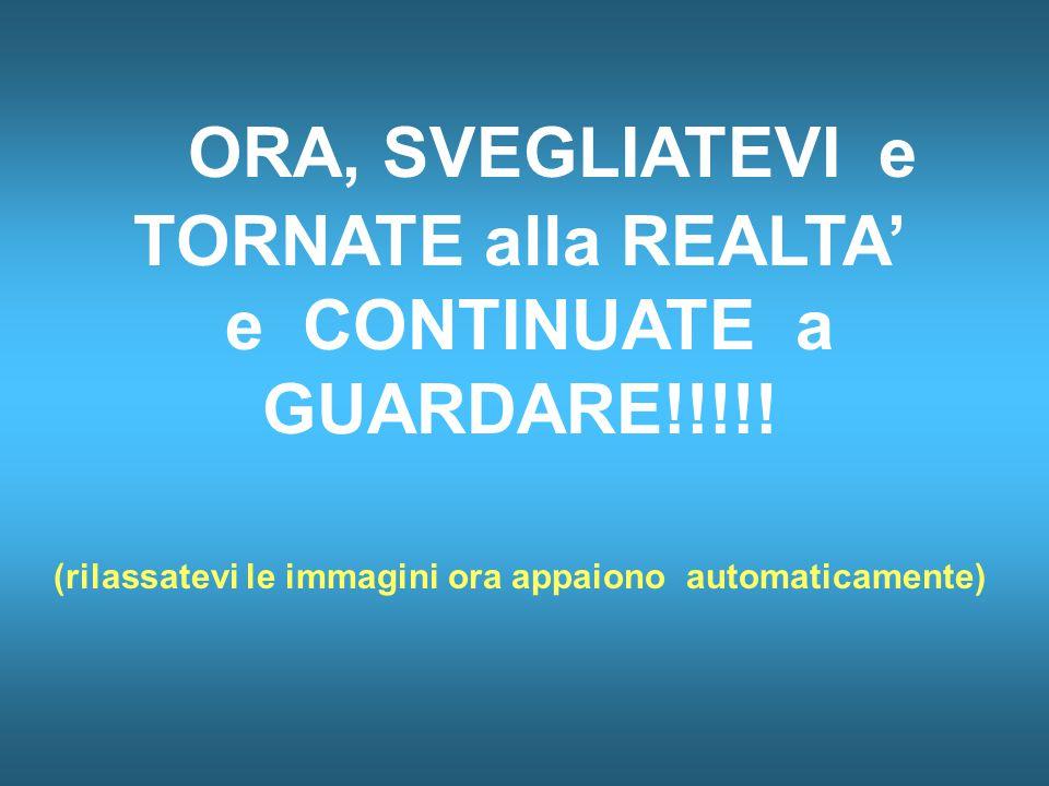 ORA, SVEGLIATEVI e TORNATE alla REALTA' e CONTINUATE a GUARDARE!!!!.