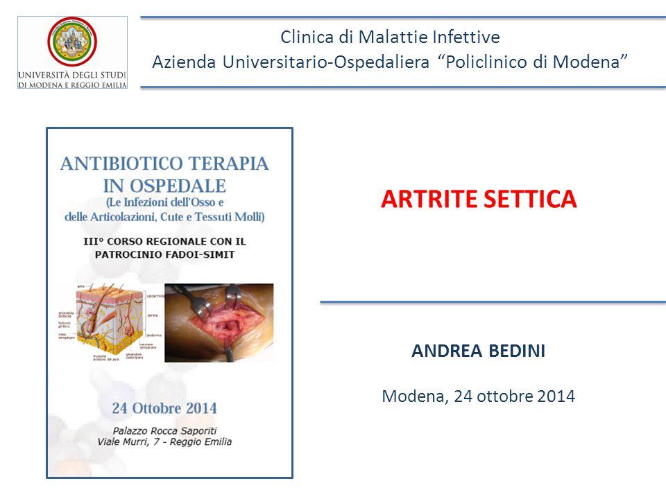ARTRITE SETTICA ANDREA BEDINI Modena, 24 ottobre 2014 Clinica di Malattie Infettive Azienda Universitario-Ospedaliera Policlinico di Modena