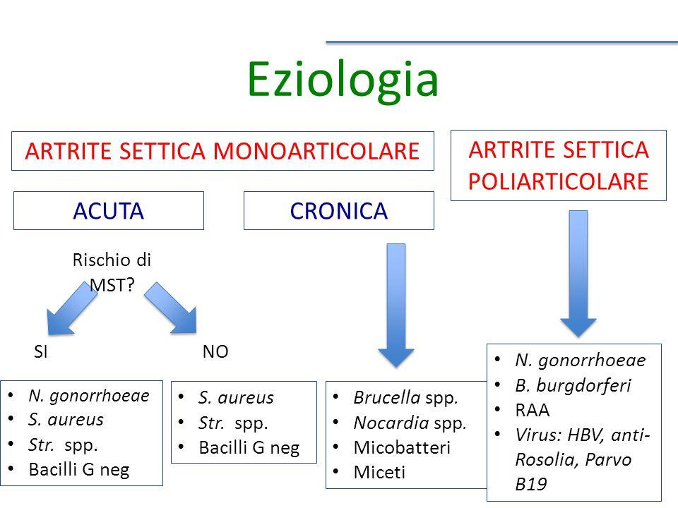 Eziologia ARTRITE SETTICA MONOARTICOLARE ARTRITE SETTICA POLIARTICOLARE Rischio di MST.