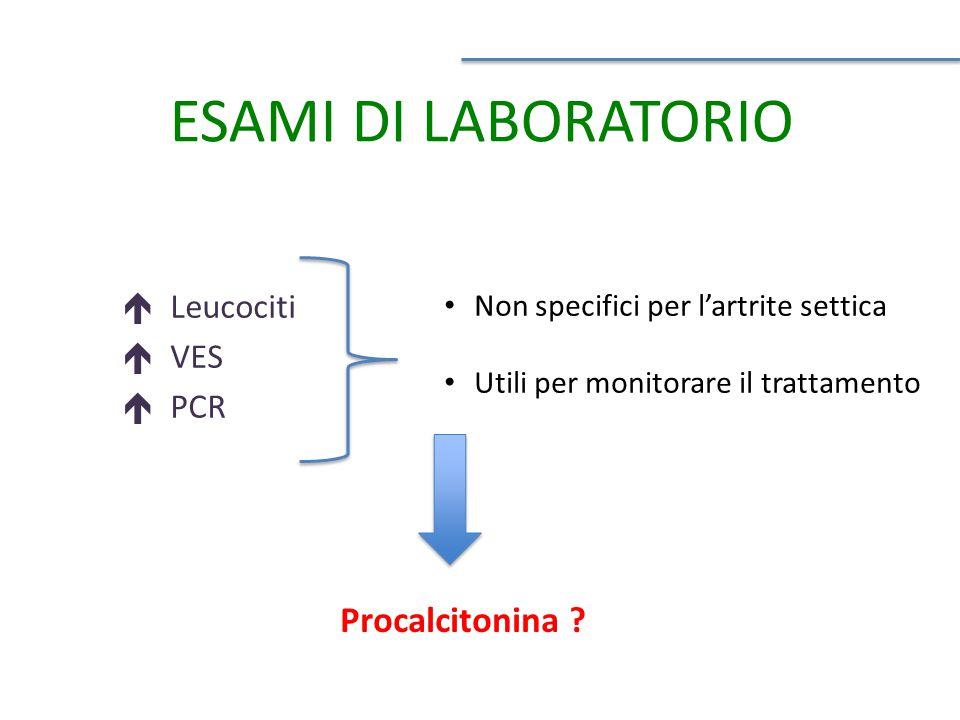 ESAMI DI LABORATORIO  Leucociti  VES  PCR Non specifici per l'artrite settica Utili per monitorare il trattamento Procalcitonina ?