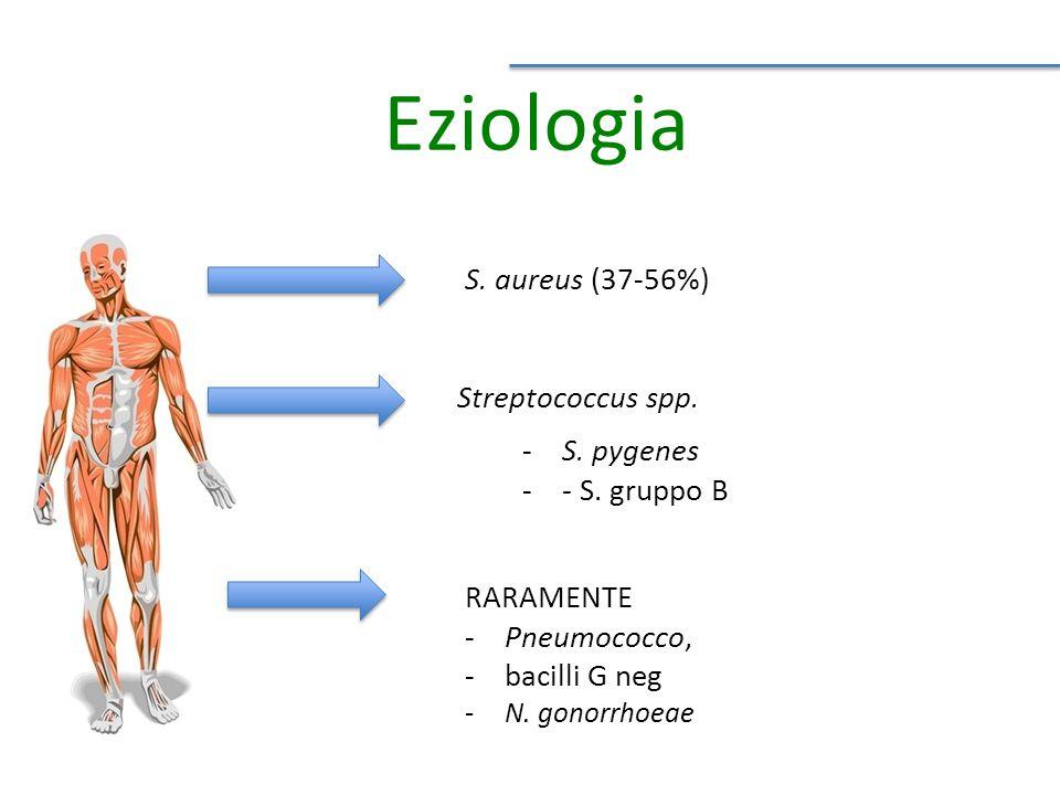 Eziologia S.aureus (37-56%) Streptococcus spp. -S.