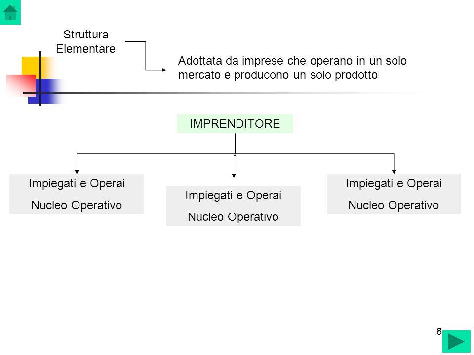 8 8 Struttura Elementare IMPRENDITORE Impiegati e Operai Nucleo Operativo Adottata da imprese che operano in un solo mercato e producono un solo prodo