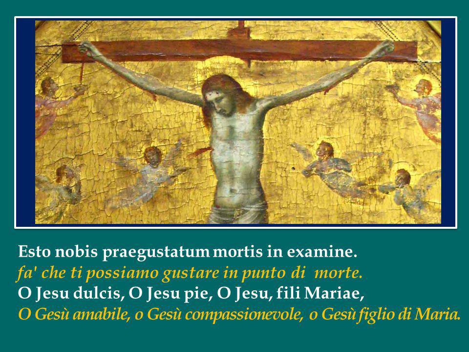 Ave Verum Corpus natum de Maria Virgine Ave, o vero corpo, nato da Maria Vergine, Vere passum, immolatum in cruce pro homine, che ha veramente patito