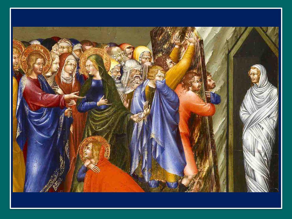 Ave Verum Corpus natum de Maria Virgine Ave, o vero corpo, nato da Maria Vergine, Vere passum, immolatum in cruce pro homine, che ha veramente patito ed è stato immolato sulla croce per l uomo, Cujus latus perforatum fluxit aqua et sanguine, dal cui fianco trafitto sgorgò acqua e sangue:
