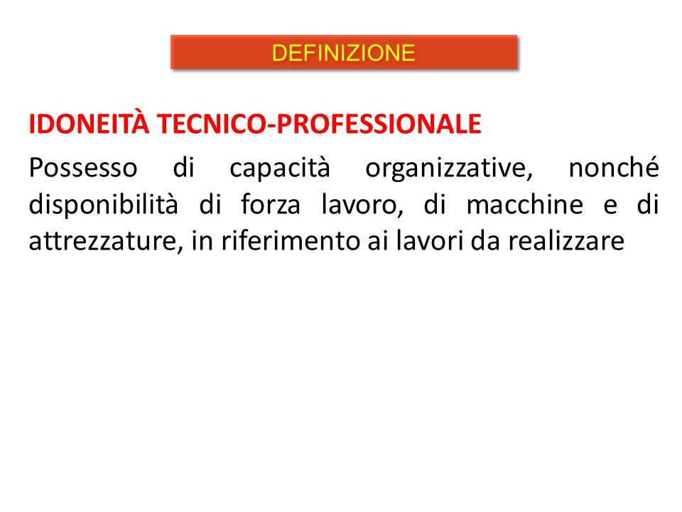 IDONEITÀ TECNICO-PROFESSIONALE Possesso di capacità organizzative, nonché disponibilità di forza lavoro, di macchine e di attrezzature, in riferimento