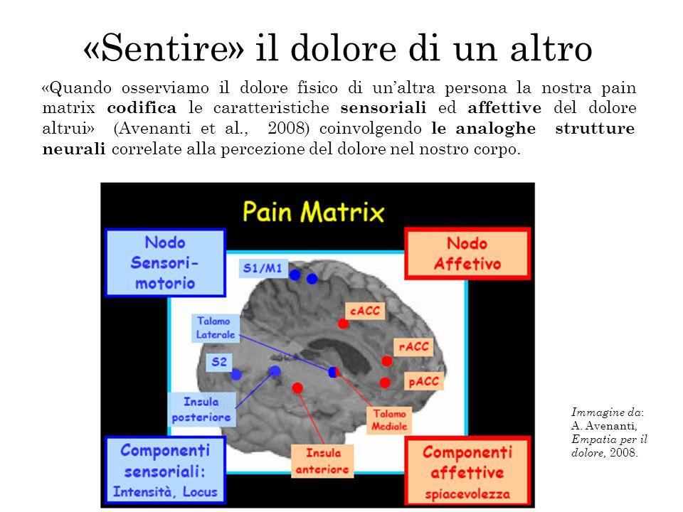 Immagine da : A. Avenanti, Empatia per il dolore, 2008. «Sentire» il dolore di un altro «Quando osserviamo il dolore fisico di un'altra persona la nos