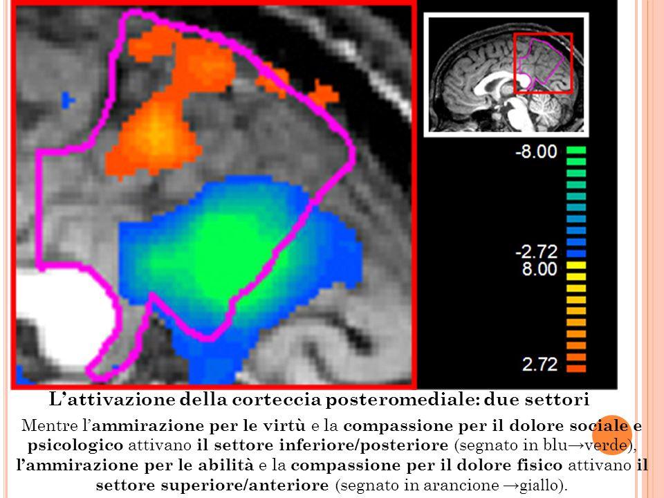 L'attivazione della corteccia posteromediale: due settori Mentre l' ammirazione per le virtù e la compassione per il dolore sociale e psicologico atti