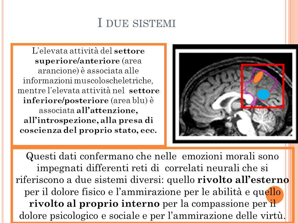 I DUE SISTEMI L'elevata attività del settore superiore/anteriore (area arancione) è associata alle informazioni muscoloscheletriche, mentre l'elevata
