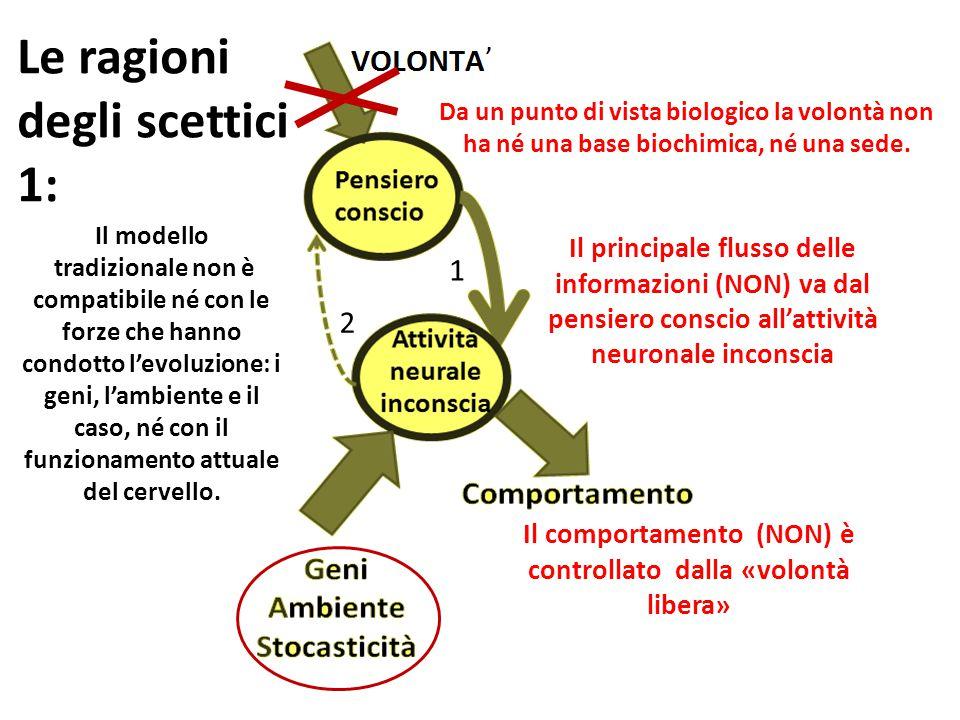 Il modello tradizionale non è compatibile né con le forze che hanno condotto l'evoluzione: i geni, l'ambiente e il caso, né con il funzionamento attua