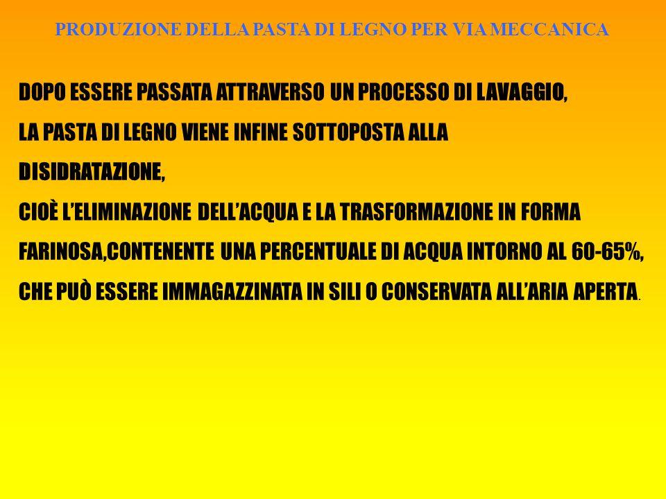 PRODUZIONE DELLA PASTA DI LEGNO PER VIA MECCANICA DOPO ESSERE PASSATA ATTRAVERSO UN PROCESSO DI LAVAGGIO, LA PASTA DI LEGNO VIENE INFINE SOTTOPOSTA ALLA DISIDRATAZIONE, CIOÈ L'ELIMINAZIONE DELL'ACQUA E LA TRASFORMAZIONE IN FORMA FARINOSA,CONTENENTE UNA PERCENTUALE DI ACQUA INTORNO AL 60-65%, CHE PUÒ ESSERE IMMAGAZZINATA IN SILI O CONSERVATA ALL'ARIA APERTA.