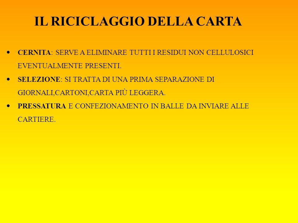 IL RICICLAGGIO DELLA CARTA  CERNITA: SERVE A ELIMINARE TUTTI I RESIDUI NON CELLULOSICI EVENTUALMENTE PRESENTI.