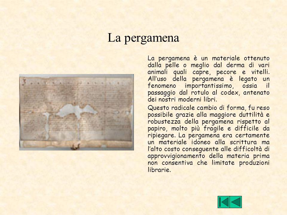 La pergamena La pergamena è un materiale ottenuto dalla pelle o meglio dal derma di vari animali quali capre, pecore e vitelli. All'uso della pergamen
