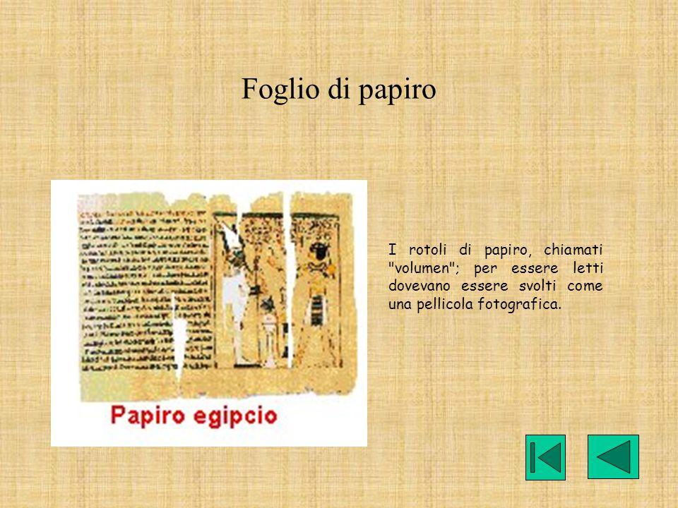 Foglio di papiro I rotoli di papiro, chiamati