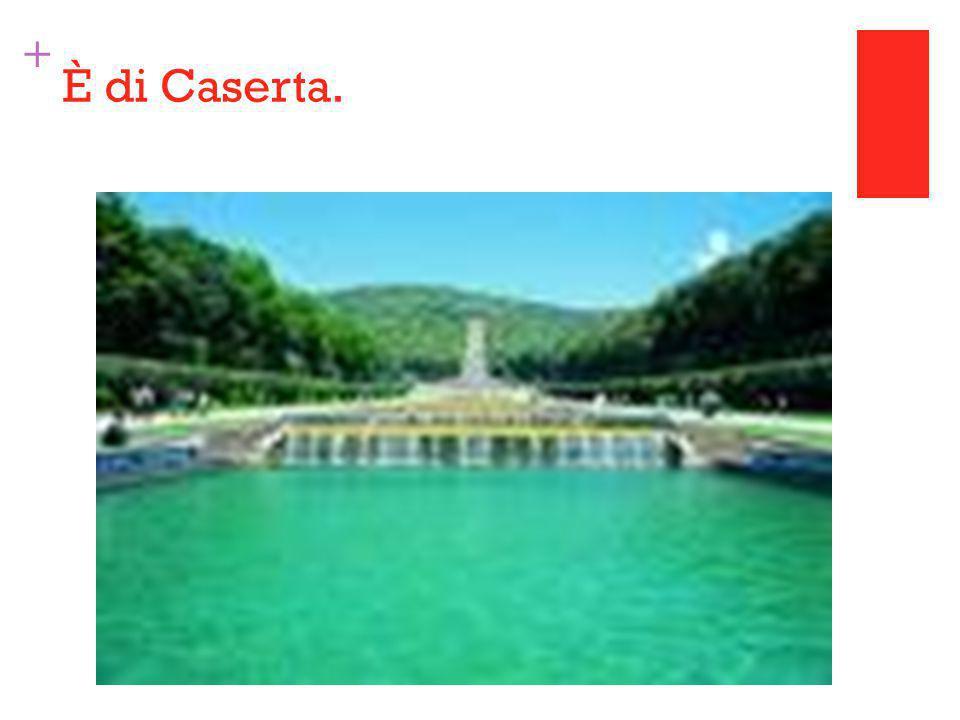 + È di Caserta.