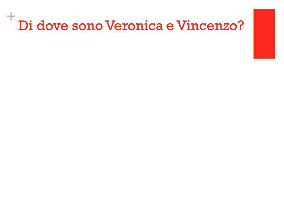 + Di dove sono Veronica e Vincenzo