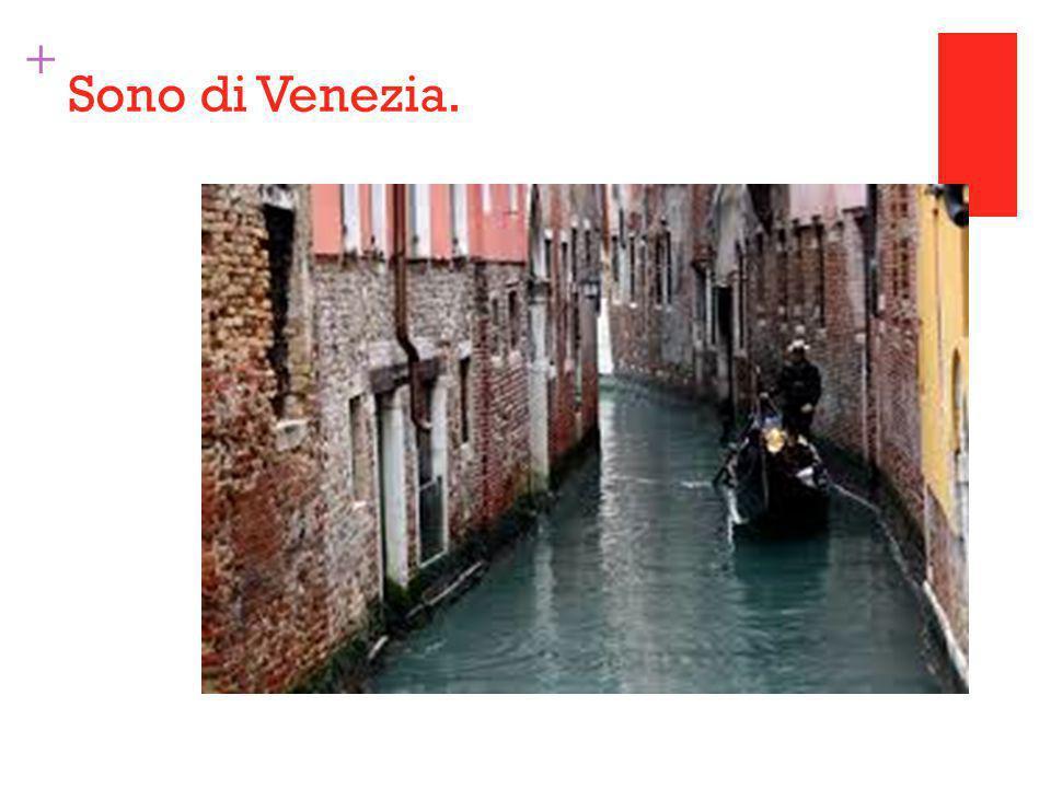 + Sono di Venezia.