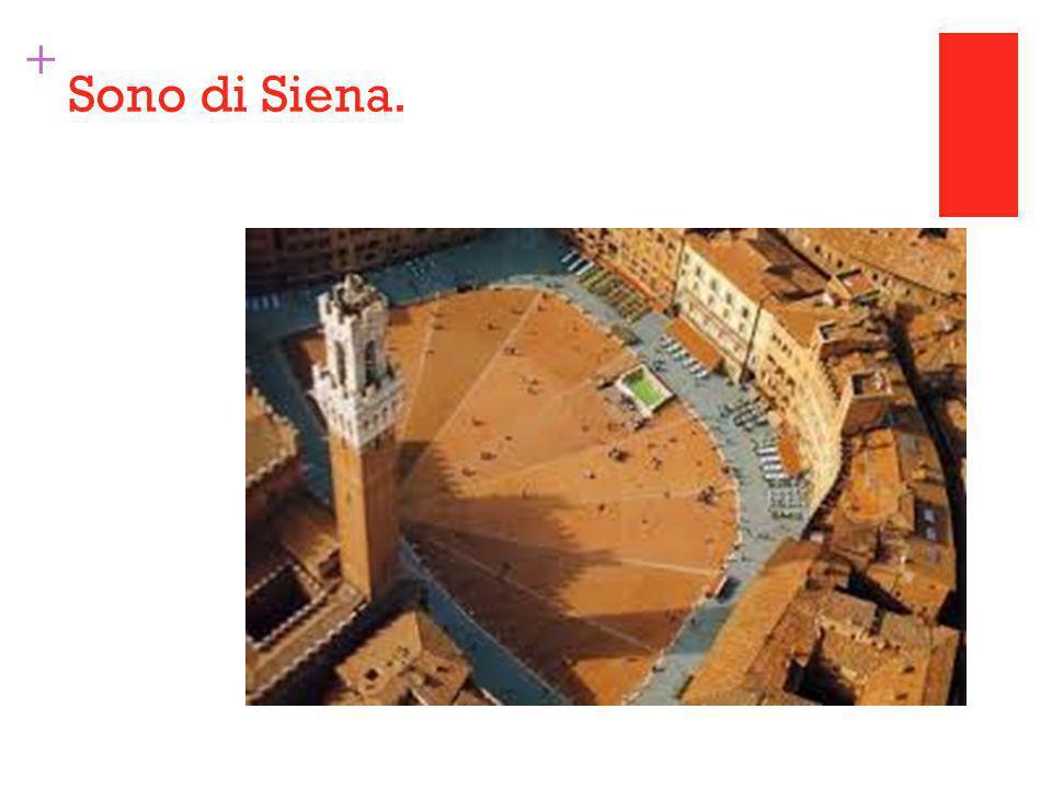 + Sono di Siena.