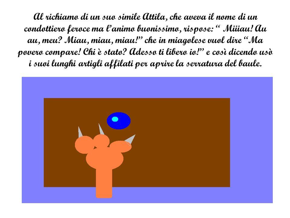 """Al richiamo di un suo simile Attila, che aveva il nome di un condottiero feroce ma l'animo buonissimo, rispose: """" Miiiau! Au au, meu? Miau, miau, miau"""
