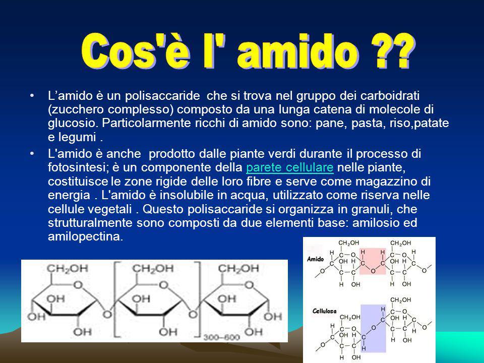 L'amido è un polisaccaride che si trova nel gruppo dei carboidrati (zucchero complesso) composto da una lunga catena di molecole di glucosio. Particol