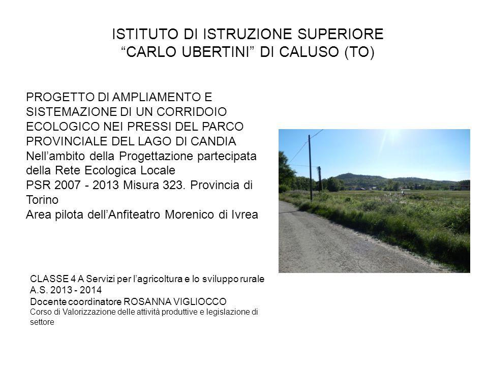 """ISTITUTO DI ISTRUZIONE SUPERIORE """"CARLO UBERTINI"""" DI CALUSO (TO) CLASSE 4 A Servizi per l'agricoltura e lo sviluppo rurale A.S. 2013 - 2014 Docente co"""