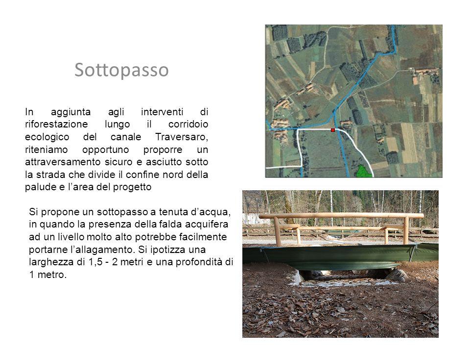 In aggiunta agli interventi di riforestazione lungo il corridoio ecologico del canale Traversaro, riteniamo opportuno proporre un attraversamento sicu