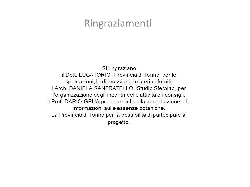 Si ringraziano il Dott. LUCA IORIO, Provincia di Torino, per le spiegazioni, le discussioni, i materiali forniti; l'Arch. DANIELA SANFRATELLO, Studio