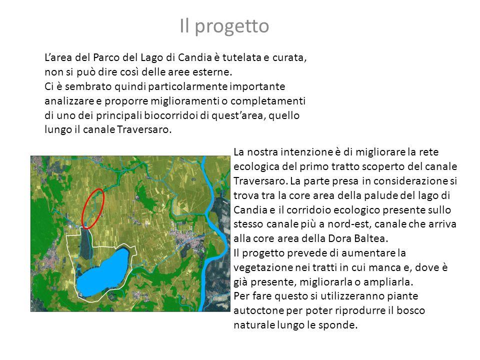 L'area del Parco del Lago di Candia è tutelata e curata, non si può dire così delle aree esterne. Ci è sembrato quindi particolarmente importante anal