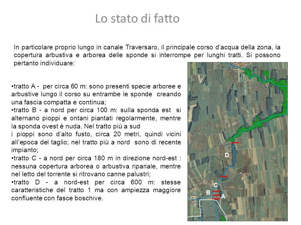 In particolare proprio lungo in canale Traversaro, il principale corso d'acqua della zona, la copertura arbustiva e arborea delle sponde si interrompe