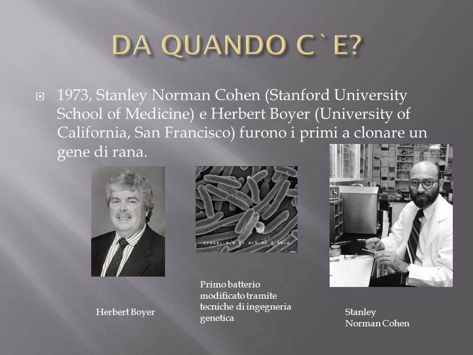  1973, Stanley Norman Cohen (Stanford University School of Medicine) e Herbert Boyer (University of California, San Francisco) furono i primi a clona