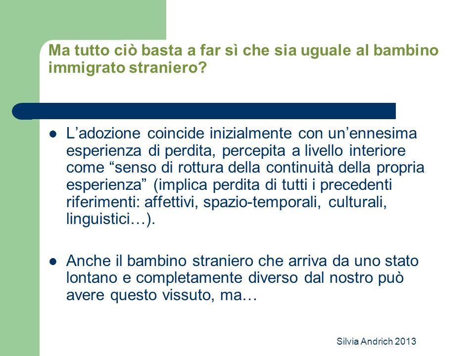 Silvia Andrich 2013 Ma tutto ciò basta a far sì che sia uguale al bambino immigrato straniero? L'adozione coincide inizialmente con un'ennesima esperi