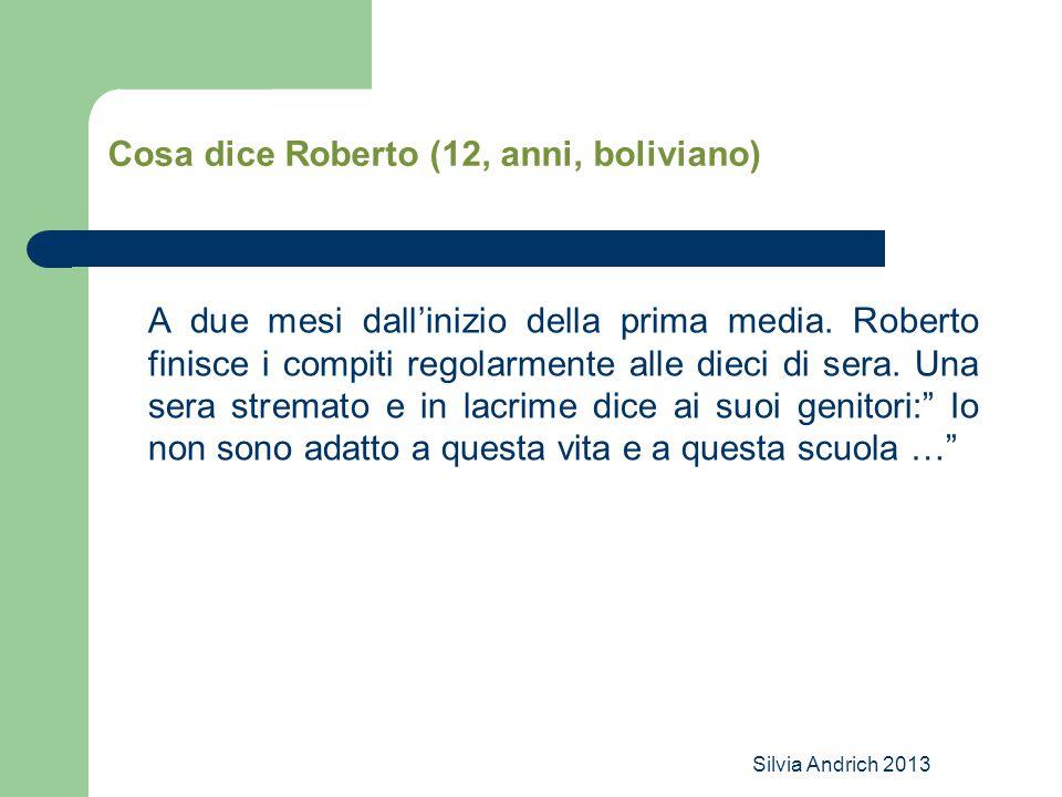 Silvia Andrich 2013 Cosa dice Roberto (12, anni, boliviano) A due mesi dall'inizio della prima media. Roberto finisce i compiti regolarmente alle diec