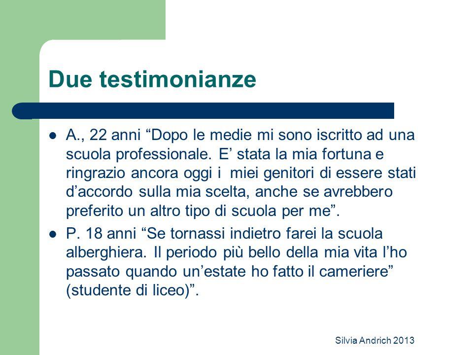 Silvia Andrich 2013 Due testimonianze A., 22 anni Dopo le medie mi sono iscritto ad una scuola professionale.