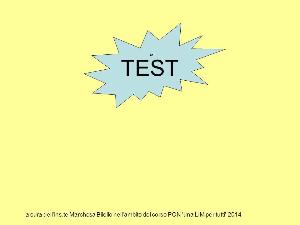 TEST a cura dell'ins.te Marchesa Bilello nell'ambito del corso PON 'una LIM per tutti' 2014