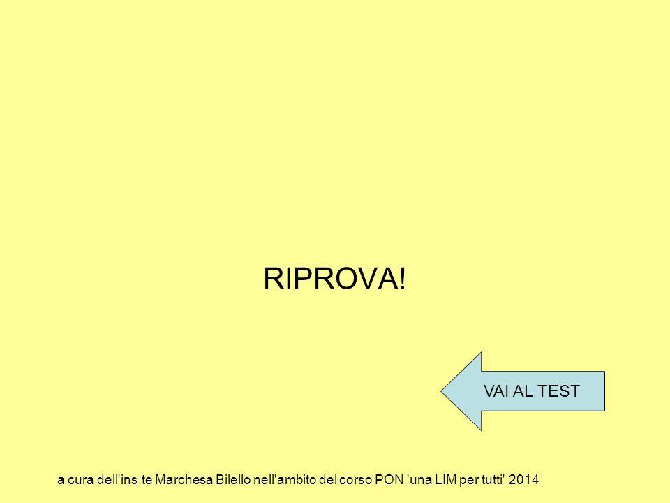 RIPROVA! VAI AL TEST a cura dell'ins.te Marchesa Bilello nell'ambito del corso PON 'una LIM per tutti' 2014