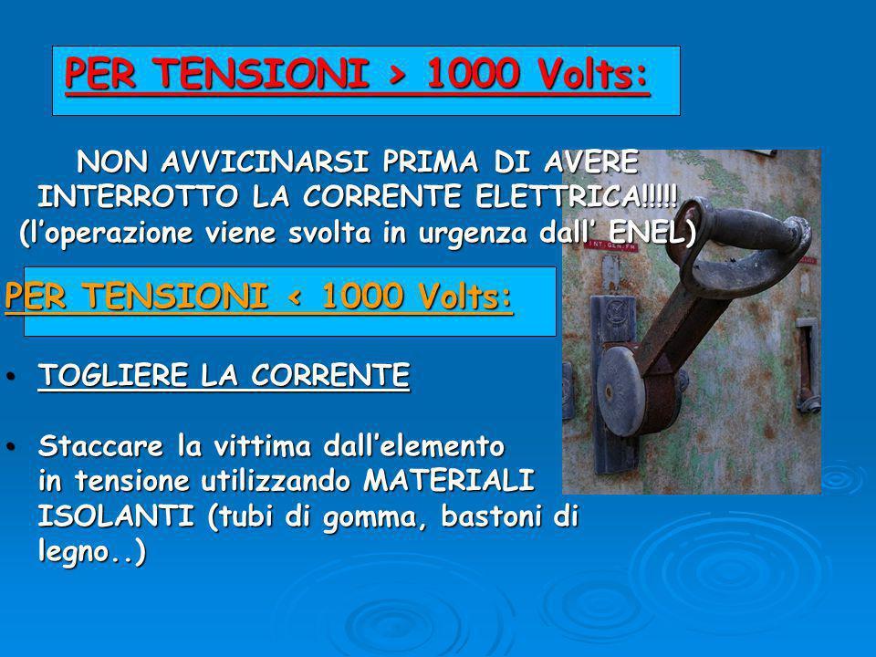 PER TENSIONI > 1000 Volts: NON AVVICINARSI PRIMA DI AVERE INTERROTTO LA CORRENTE ELETTRICA!!!!.